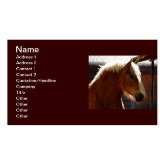 Horse-viewed-from-profile807 BROWN HORSE WHITE MAN Business Card