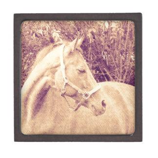 Horse, Vintage look Premium Gift Boxes