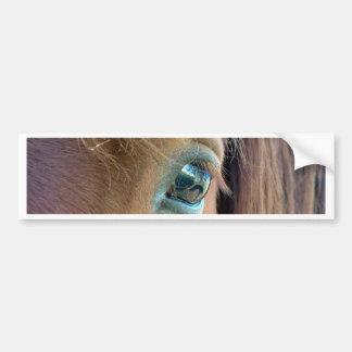 Horse Vision Car Bumper Sticker