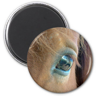 Horse Vision Magnet