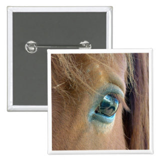 Horse Vision Pinback Button
