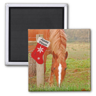 Horse w/Stocking Magnet
