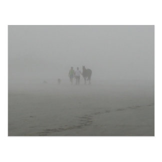 Horse Walking on the Beach in the fog Postcard