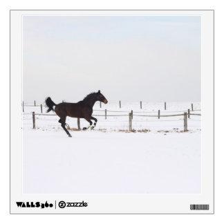 horse room sticker
