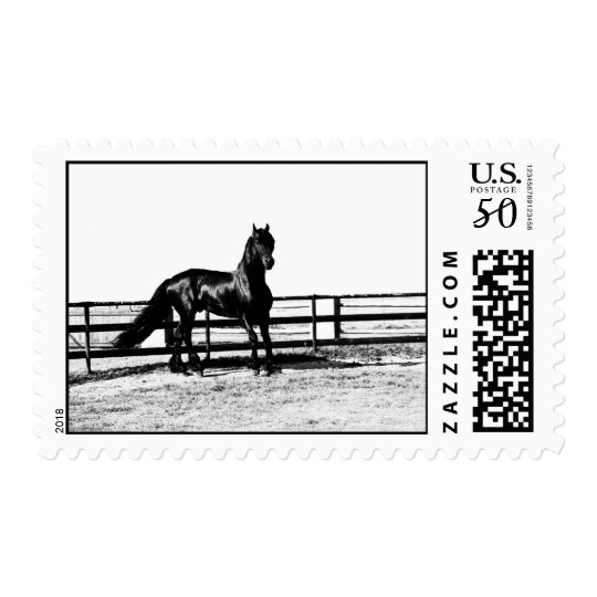 Horse watching over you postage