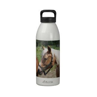 Horse Drinking Bottles