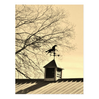 Horse Weather Vane sepia Postcard