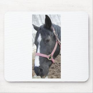 Horse Whisperer Mouse Pad