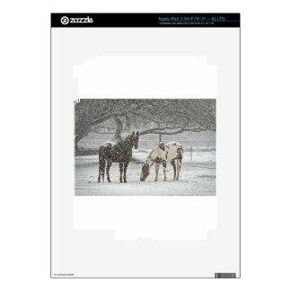 horse winter snow farm ranch animals snowy frozen iPad 3 decals