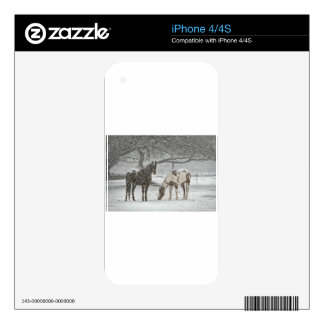 horse winter snow farm ranch animals snowy frozen iPhone 4 skins