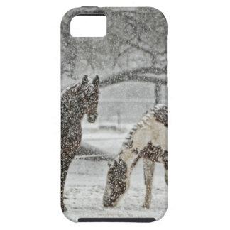 horse winter snow farm ranch animals snowy frozen iPhone SE/5/5s case