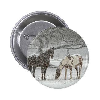 horse winter snow farm ranch animals snowy frozen pinback button