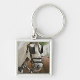 Horse with blinders keychain