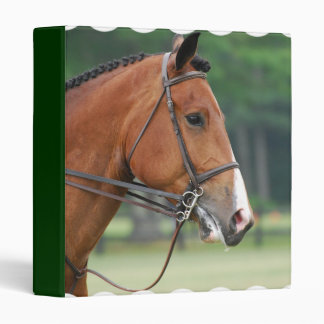 Horse with Bridle Binder