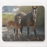 Horse with foal mousepad