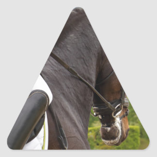 Horse with Raising Triangle Sticker