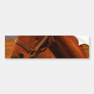 Horse with Red Bow Bumper Sticker