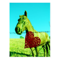 Horse with red hearts postcard