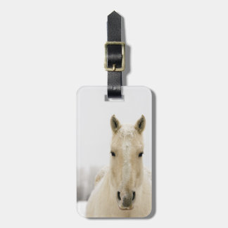 Horse with snow on head bag tag