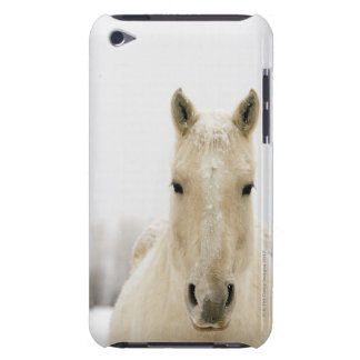 Horse with snow on head barely there iPod cover