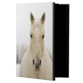 Horse with snow on head iPad air case