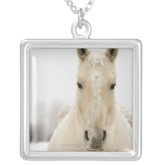 Horse with snow on head silver plated necklace