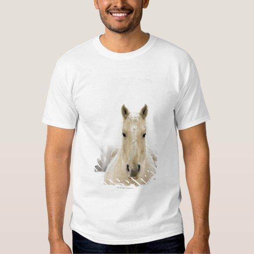 Horse with snow on head tee shirt