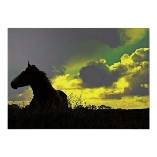 Horse with the sunset, Paper poster (chechmate)
