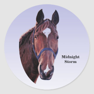 Horse with White Star (change text) Classic Round Sticker