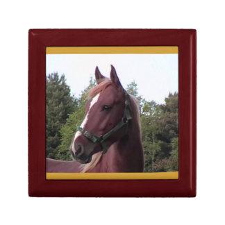 Horse ( Wood)  Small Gift Box