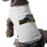 Horseback pet clothing