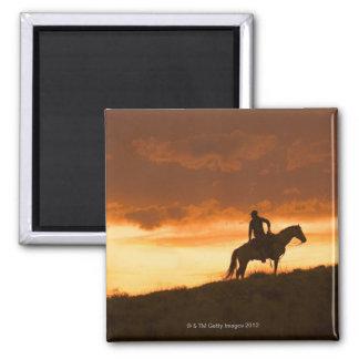 Horseback rider 10 magnet