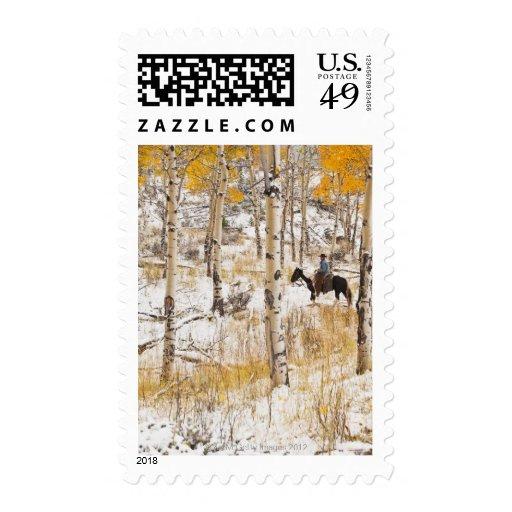 Horseback rider 13 stamp