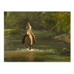 Horseback rider 17 postcard
