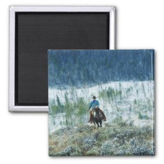 Horseback rider 4 magnet