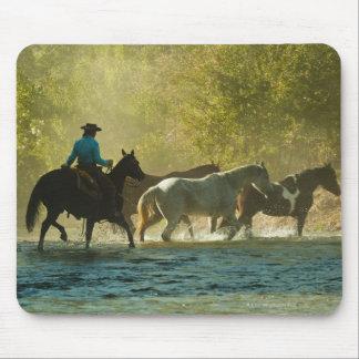 Horseback rider herding horses mouse pad