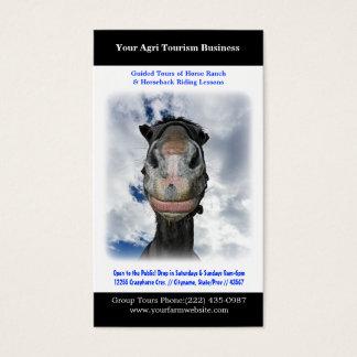 Horseback Riding Horse Ranch or Farming Business Card