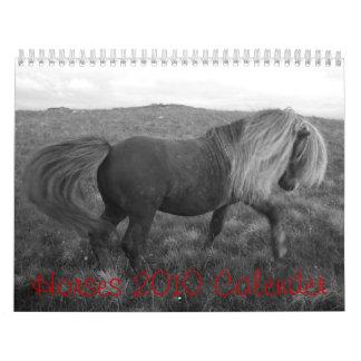 horsee, Horses 2010 Calender Calendar