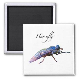 Horsefly Refrigerator Magnet