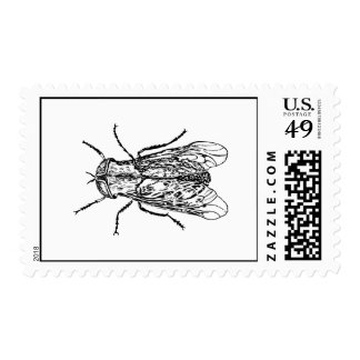 Horsefly Postage Stamp