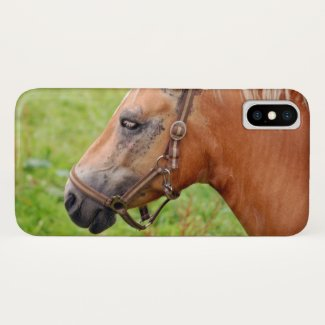 Horsehead 003 iPhone x case