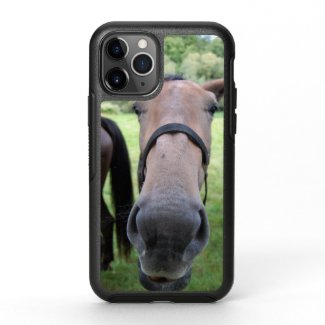 Horsehead 004 OtterBox symmetry iPhone 11 pro case