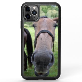 Horsehead 004 OtterBox symmetry iPhone 11 pro max case