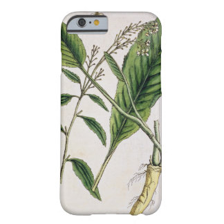 Horseradish, plate 415 from 'A Curious Herbal', pu Barely There iPhone 6 Case