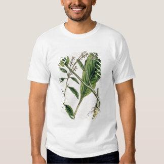 Horseradish, plate 415 from 'A Curious Herbal', pu T-shirt