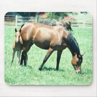 Horses 123 Mousepad