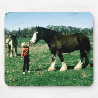 Horses 182 Mousepad