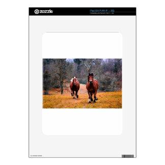 horses-1984977_960_720 skin for iPad