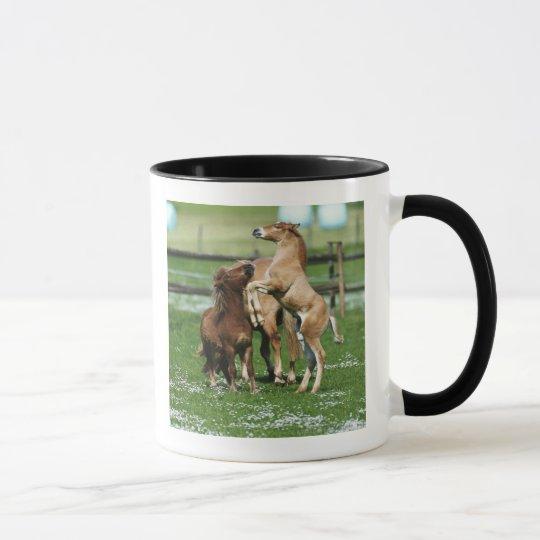 Horses 3 mug