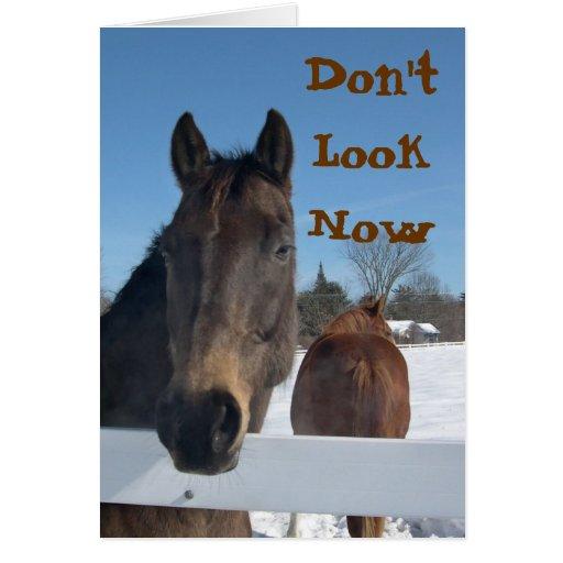 Horses 50th Birthday Card